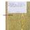renner грунт эмаль патина+ аквалак артикул: Браш+ Бежевый 5020G90